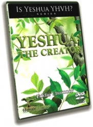 Yeshua: The Creator - DVD